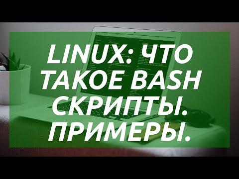 Linux: что такое BASH скрипты. Примеры.