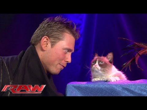 Grumpy Cat meets The Miz: Raw, November 17, 2014