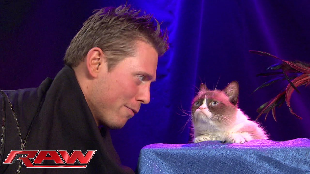 Grumpy Cat Meets The Miz Raw November 17 2014 Youtube