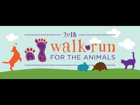 2018 SW Humane Walk Run for the Animals Finisher Video