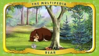Multipedia of Animals. The Bear (Мультипедия животных на английском языке)