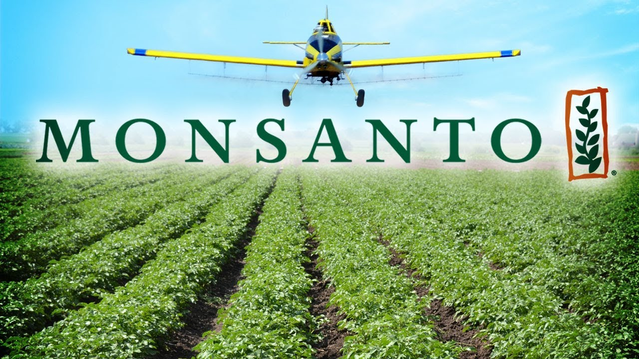 rounding up the facts about a roundup and glyphosate youtube