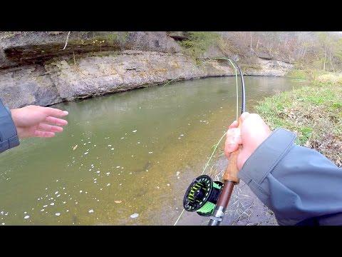 Creek Fishing & Fall Smallmouth