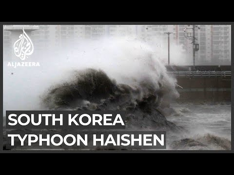 Typhoon topples trees, knocks out power in South Korea