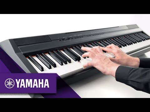 P-115 Digital Piano Overview