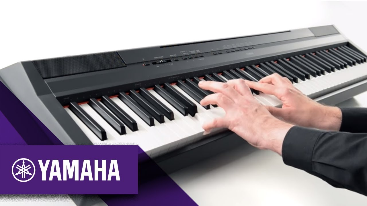 Yamaha DGX-660 vs Yamaha P-115: What Should You Buy