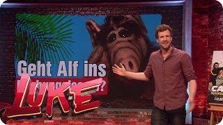 Spice Girls zurück, Alf im Dschungelcamp