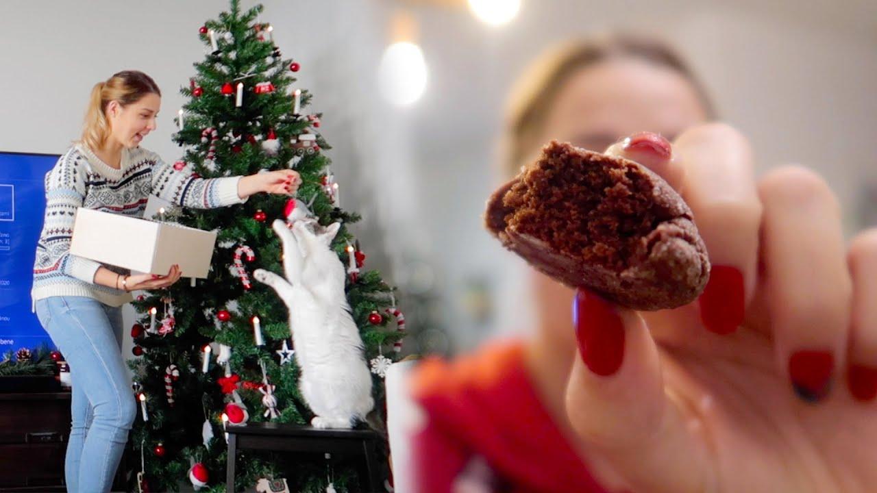 ULTIMÁTNY VLOGMAS a sušienky, na ktoré chce každý recept | Patra Bene