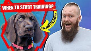 When Should I Start Training My GERMAN SHORTHAIRED POINTER PUPPY?