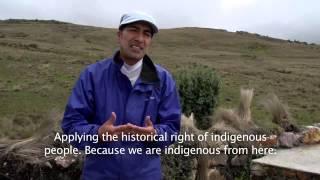 Participación política y pueblos indígenas