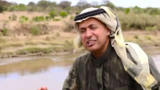 أيام أفريقية: الاسد ليس ملك الغابة وهناك سلام في سرنغيتي – الحلقة الخامسة