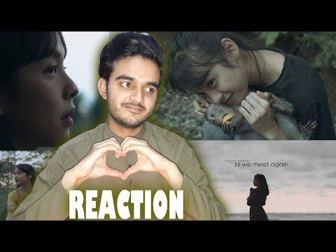 Reaction On: Alffy Rev - Till We Meet Again (ft Little Linka) Official Music Video