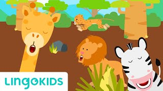 Savannah Song - Learn Animal Sounds | Lingokids - School Readiness in English
