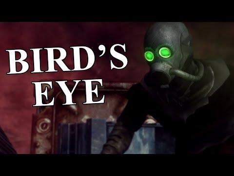 New Vegas Mods: Bird's Eye - Plane Craze!