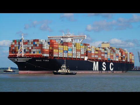 MSC TINA - 2017 built containership arriving at port of felixstowe from Colombo,Sri lanka 16/6/17