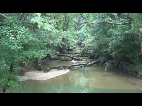 Welcome to my world....... Robinson Creek, Jackson County, Alabama