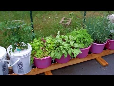 How To Plant The Self Watering Rain Gutter Grow System!