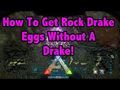 How To Get Rock Drake Eggs Without Your Own Drake!