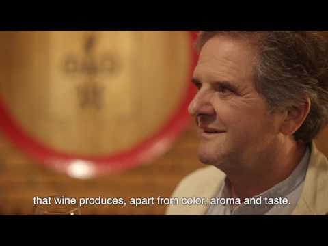 Arba Wine Presentation Film