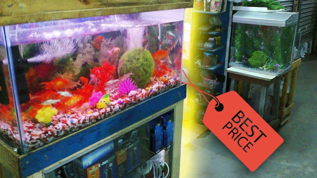 Cheap fish tanks aquariums petco 1 a gallon sale for Discount fish tanks