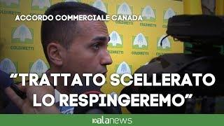 """Di Maio: """"Non ratificheremo Ceta, funzionari a favore saranno rimossi"""""""