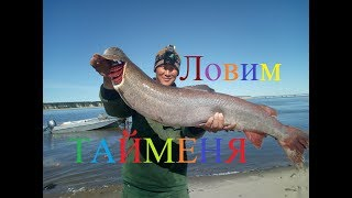 We catch taimen, sturgeon and burbot! Fishing in Yakutia! Russia ENG SUBS