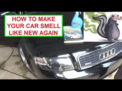 How to Make Your Car Smell like New Again for a few $$$