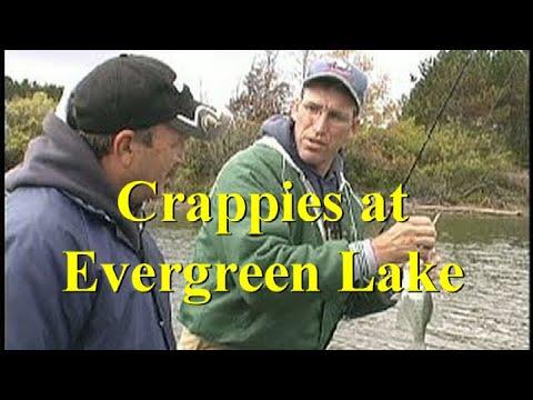 Crappies At Evergreen Lake