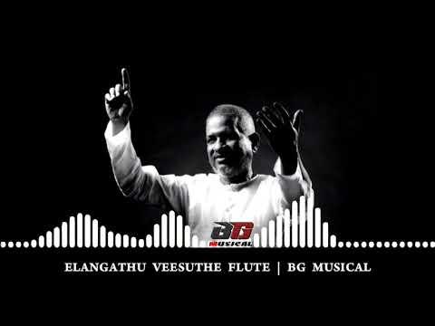Elangathu Veesuthe Flute | Status Video | BG Musical