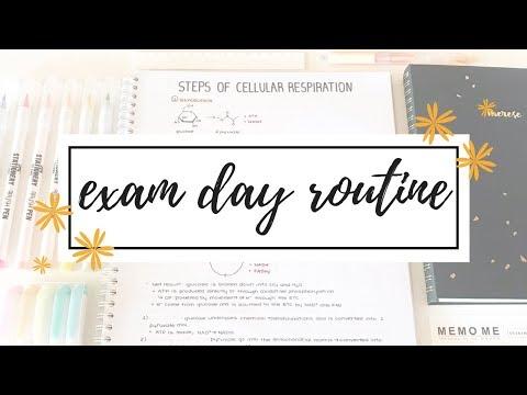 Exam Day Routine & Tips | studytee