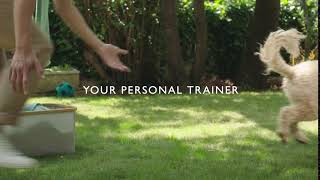 John Lewis Pet Insurance | Your personal trainer