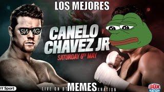 Los mejores memes de la pelea de ¨El Canelo Alvarez vs Julio Cesar Chavez Jr¨