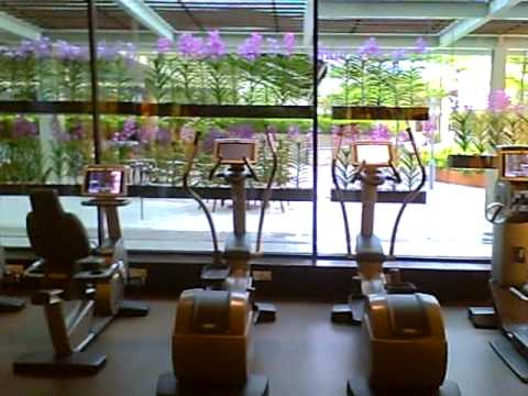 The new pan pacific hotel gym in singapore youtube - Pan pacific orchard swimming pool ...
