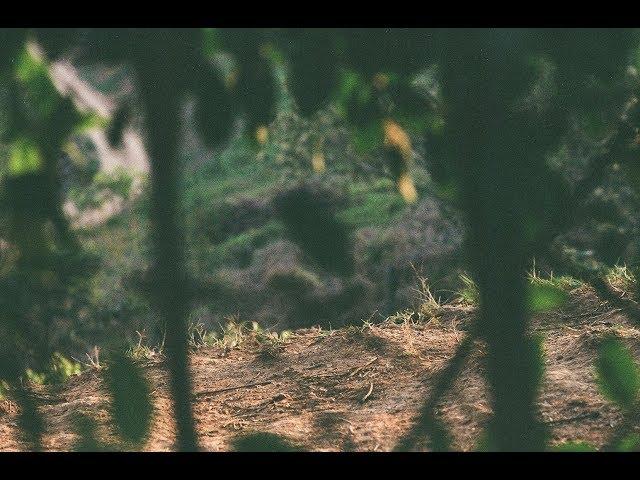 Quatro Mãos | Fértil - Traz você de novo Ep.02