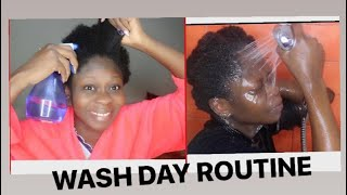 SIMPLE WASH DAY ROUTINE ON MY SHORT 4C HAIR USING RICE WATER