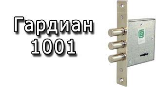 Vasiy 1001 - arzon, sifatli todd