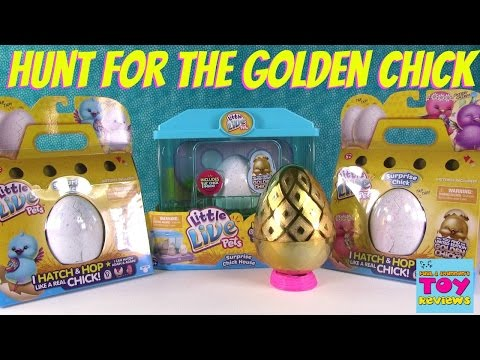 Thumbnail: Surprise Chick Eggs Little Live Pets Opening Hunt For Limited Edition | PSToyReviews