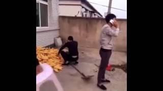 Bromas de chinos
