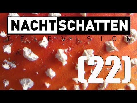 Fliegenpilz / Naturdrogen / Symposium (RE-UPLOAD) | Nachtschatten Television (22)