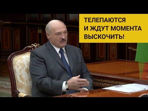 «Пофигизм и безразличие!» Лукашенко откровенно высказался о проблемах ЕАЭС