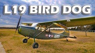 L19 Bird Dog (Cessna 170 Variant) - Flight & Interview