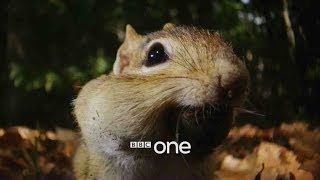 Hidden Kingdoms: Launch Trailer - BBC One