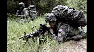 Slowenische Armee Slovenian Army