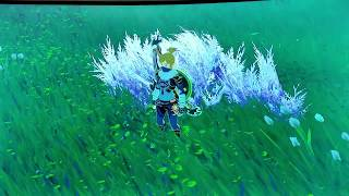 ALL SPARROW LOCATIONS in The Legend of Zelda Breath of the Wild!!