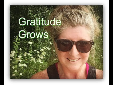 Day 7 Gratitude Grows #SSSVEDA (Vlogging Every Day In August)