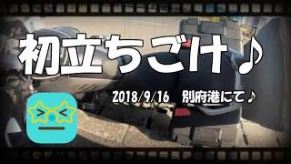 【初立ちごけ】2018/9/16別府港にて立ちごけシーン