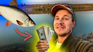 Наловил рыбы - заработал денег! Как это? Рыбалка на фидер.