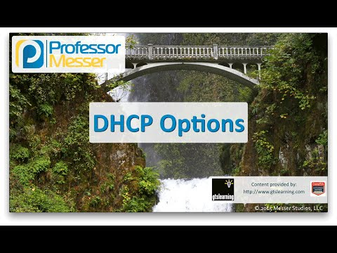 dhcp-options---comptia-network+-n10-006---1.3
