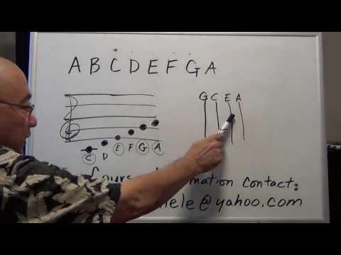 Introduce Music Theory and Notation Ukulele EZ 1B