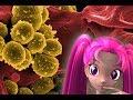 Wie gross sind Bakterien ?